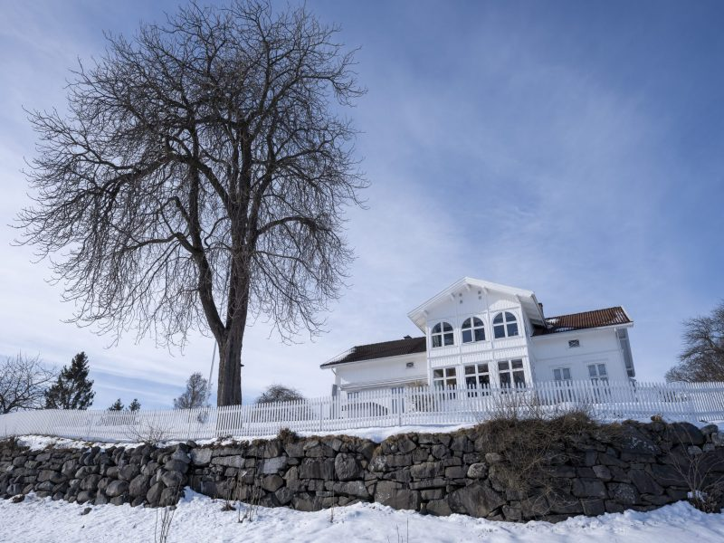 GFX100S mansion